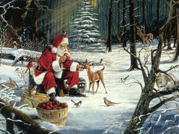 Varázslatos karácsony Gyulán!