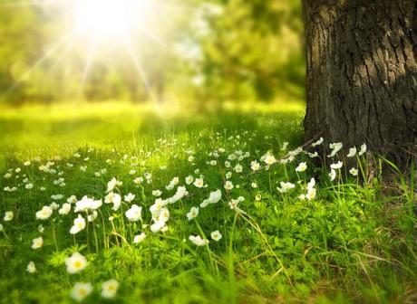 Tavaszi hétvége